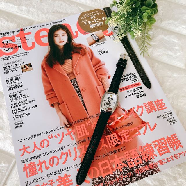 steady.(ステディ.)2019年12月号増刊