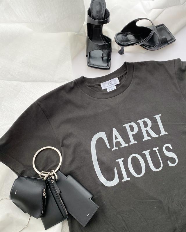 CAPRICIOUS T-shirt・Smoke black×grayish white