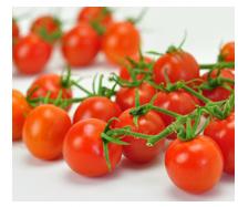 お洒落な野菜栽培キット ベジフィール ミニトマト