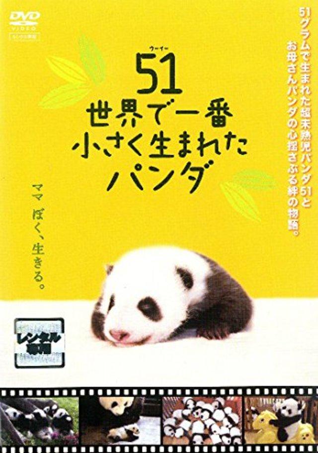 51 (ウーイー) 世界で一番小さく生まれたパンダ
